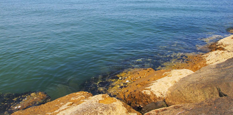mare-isolaverde-tamerici